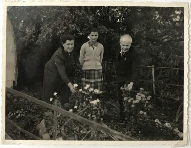 Husbands Bosworth 1955